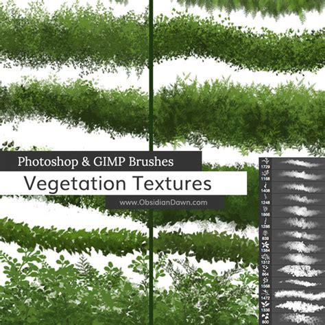 pattern photoshop vegetation vegetation foliage textures photoshop gimp brushes