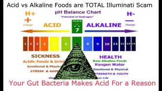 Toa Primer Alkali 20 Liter acid vs alkaline foods are a total illuminati scam