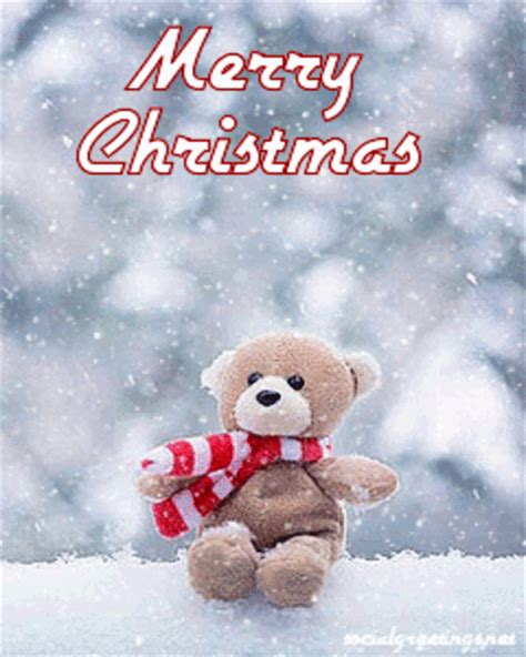 cute merry christmas bear pictures   images  facebook tumblr pinterest  twitter