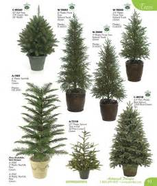 1000 images about evergreen trees and landscaping on