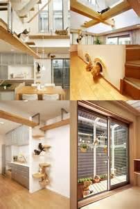cat friendly home design 10 casas para perros y gatos que os har 225 n alucinar el