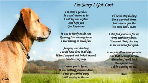 poems about dogs poems losing friend memes