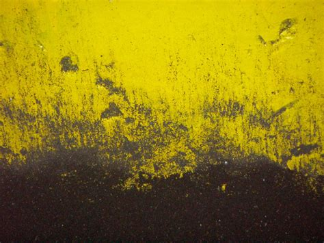 wallpaper hd yellow black and yellow wallpaper 11 background