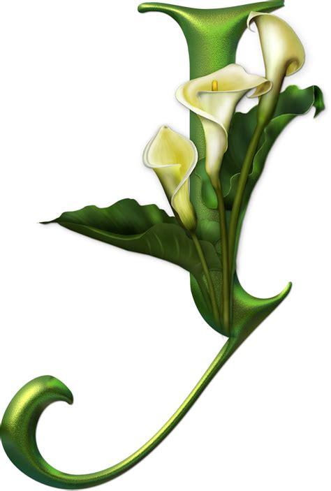 imagenes en png de flores marcos gratis para fotos abecedario de frutas y flores png