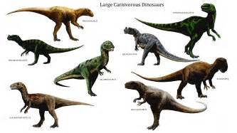 Most dinosaurs lived to be 100 years old try this dinosaur related