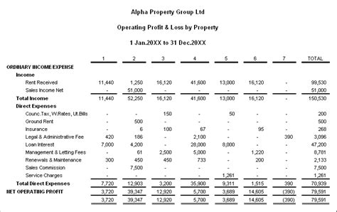 rental property profit and loss statement template express accounting