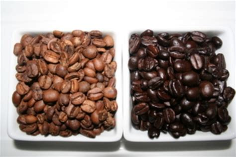which coffee is stronger light or dark roast coffea arabica