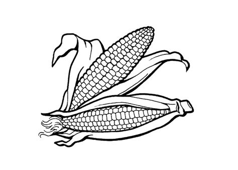 indian basket coloring page indian corn coloring free coloring pages on art coloring