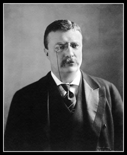 presidency of theodore roosevelt wikipedia the free theodore roosevelt photo 8x10 president teddy portrait