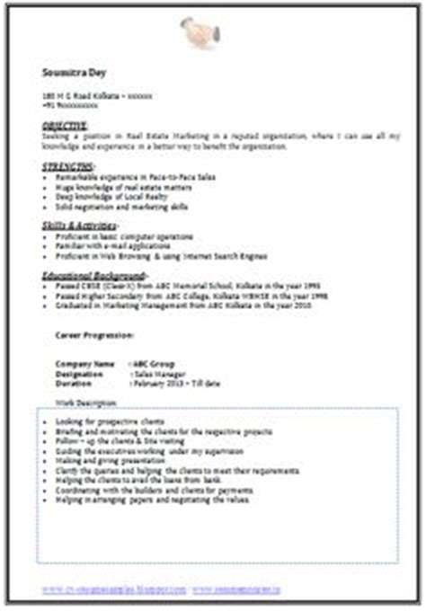 Mba Emphasis In Information Systems In California by Professional Curriculum Vitae Resume Template Sle