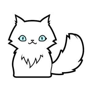 how to your to like cats how to draw cats cats for to draw polyvore