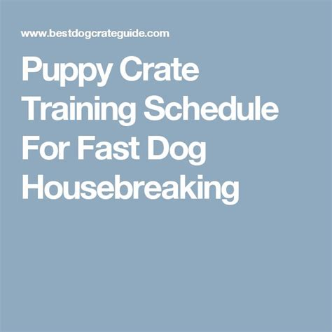 puppy bathroom schedule puppy crate training schedule for fast dog housebreaking