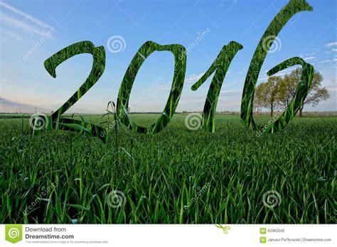 2016 happy new year grass cartoon vector cartoondealer com 60323745
