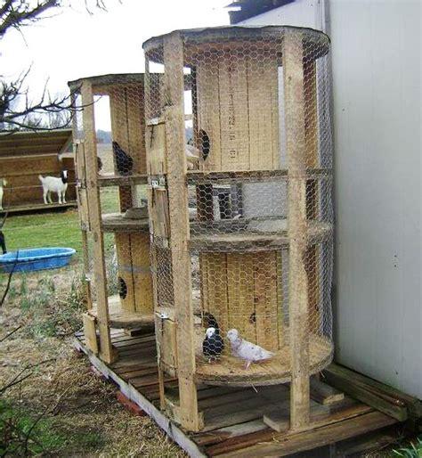 gabbia per galline fai da te pollaio fai da te con materiali di recupero e riciclo