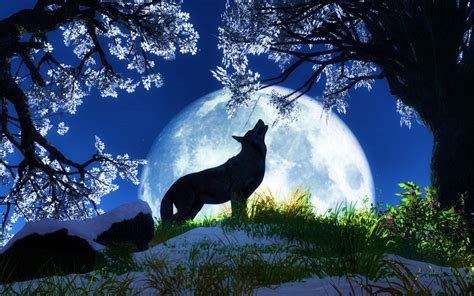 wallpaper for desktop of animals animal wallpapers new stylish wallpaper