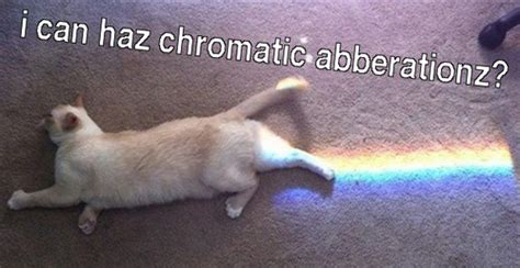 Cat Rainbow Meme - great cats be funny blog 26 of the funniest cat memes and