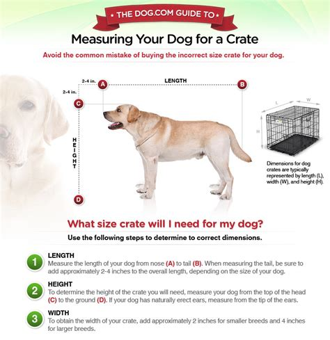 kennel sizes document moved