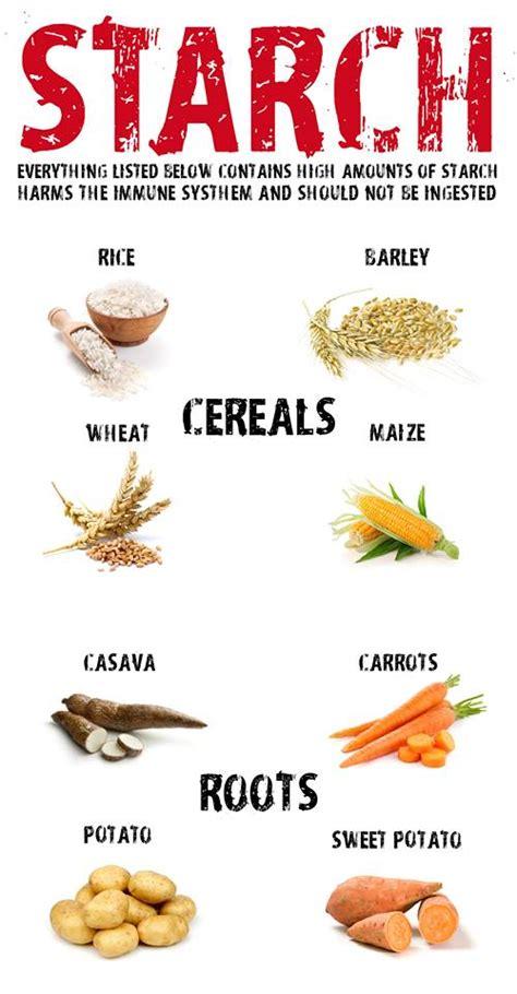 28 starch free diet food list specific carbohydrate diet foods list health pinterest