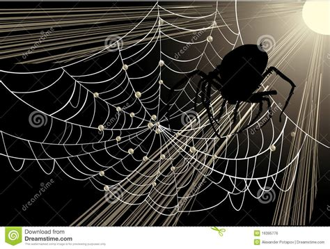 bid web big spider in web royalty free stock image image 16395776