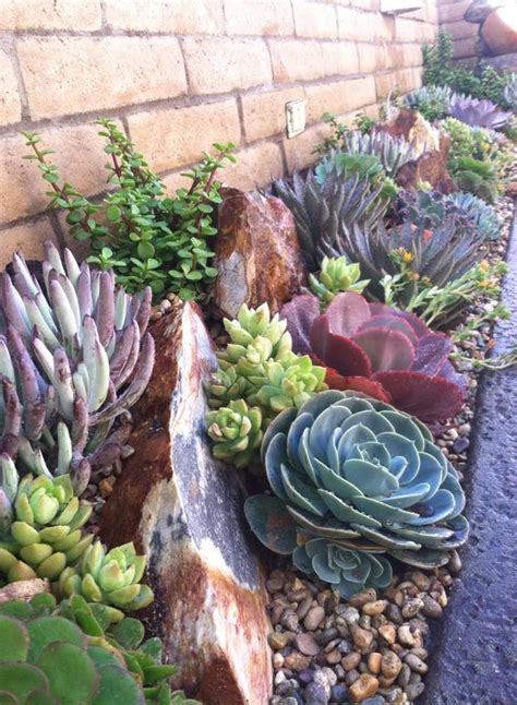 Succulent Rock Garden 10 Different And Great Garden Project Anyone Can Make 8 Gardens House Trim And House