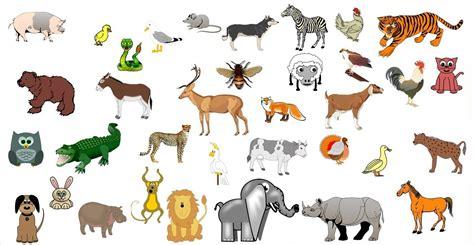 imagenes de animales terestres los animales thinglink
