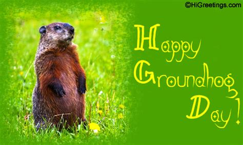 groundhog day s big show any big ground hog day plans ao page 2 actuarial outpost