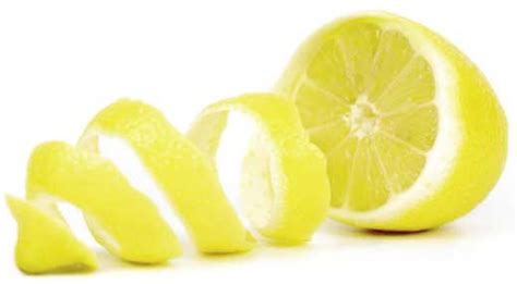 Abs Lemon Outer uncategorized you learn something new every day page 2