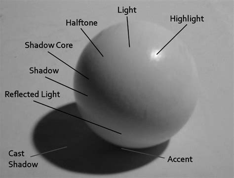 a pattern of shadow and light book 5 basic chiaroscuro various ways light is reflected an