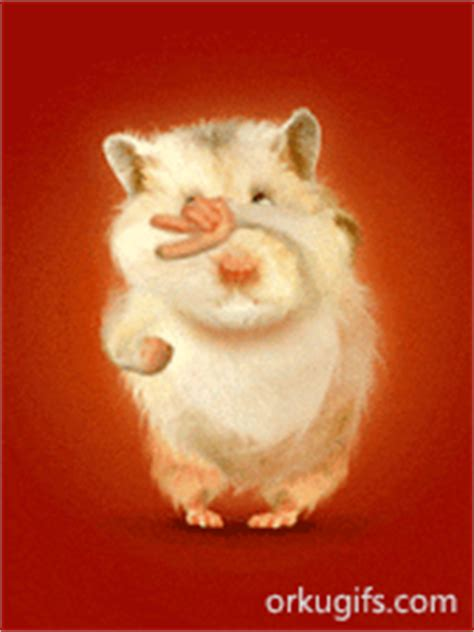 funny hamster dancing images  messages