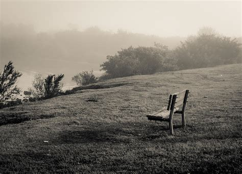 lonely bench lonely bench photograph by gabrielle harrison