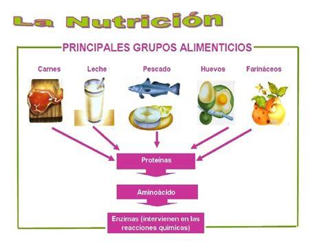 grupos imagens de cheguei orkutudocom principales grupos alimenticios