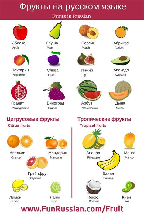 i fruit names fruits and berries in russian