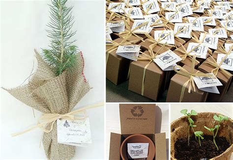 Wedding Favors Trees by Tree Wedding Favors