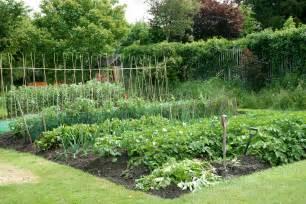 Backyard Veggie Garden Garden Planning And Crop Rotation Dobies Blog