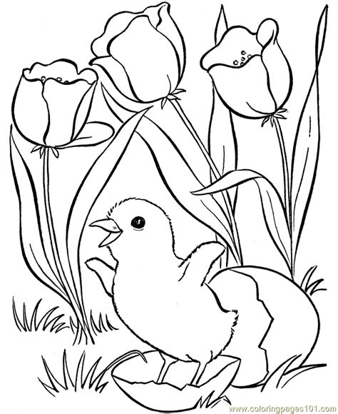 Spring Animals Coloring Pages Az Coloring Pages Springtime Coloring Pages
