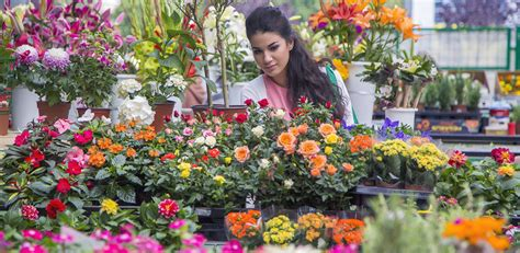 Flowers For Sale by Flower Industry Statistics Statistic Brain