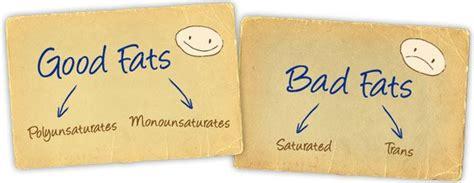 healthy fats and unhealthy fats a insight into healthy vs unhealthy fats