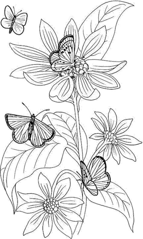 coloring pages of flowers with names best 20 free coloring pages ideas on