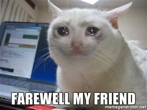 Goodbye Cat Meme - farewell my friend crying cat meme generator