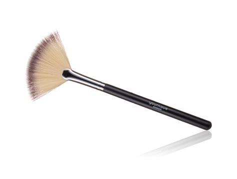 what is a fan brush for fan brush