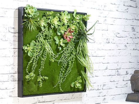 pflanzen deko carlo wandbepflanzungen vertikaler wandgarten kurt
