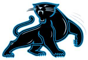 panther colors evilwordsmith words thoughts contemplations