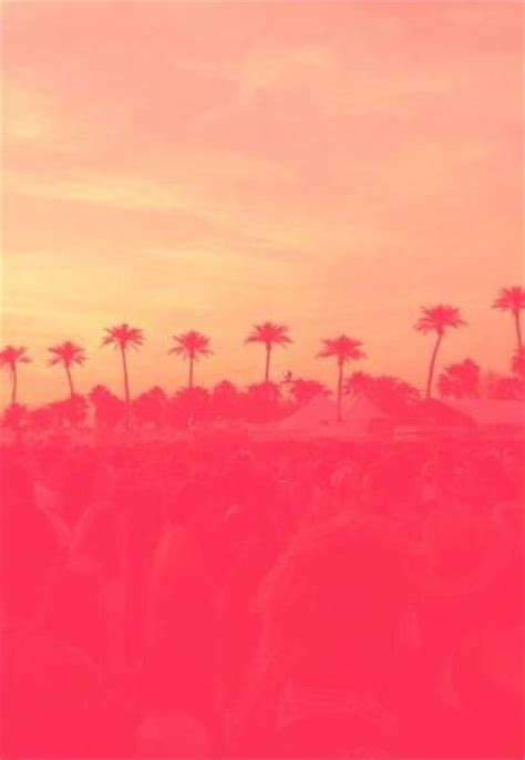 wallpaper summer pink iphone wallpaper sunset summer pink orange pal trees