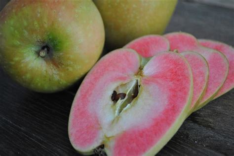 App L by Apple Fruit Maven