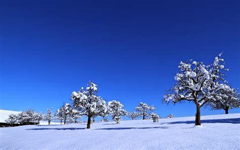 blue sky landscape blue sky nature winter landscape snow tree wallpaper