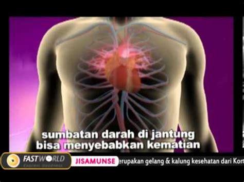 Kalung Kesehatan Jisamunse solusi segala penyakit gelang kalung kesehatan jisamunse