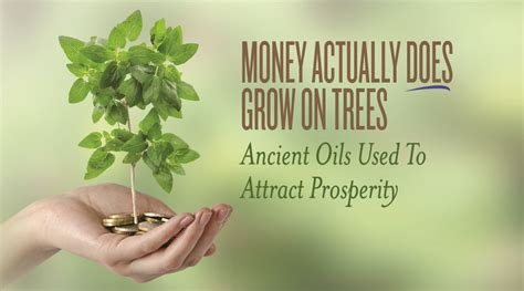 a to a dollar growing the family business coins add up books money actually does grow on trees