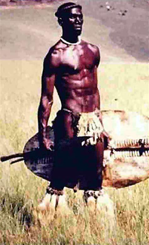 henry zulu henry cele as shaka zulu www pixshark com images
