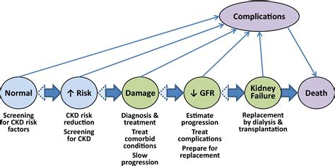 ajkd kdoqi guidelines a decade after the kdoqi ckd guidelines american journal