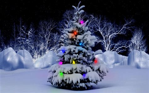 beautiful christmas pictures beautiful christmas tree snow wallpaper